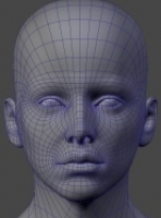 headtopology1