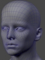 headtopology2