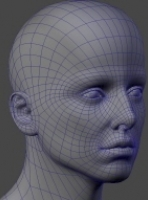 headtopology3