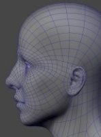 headtopology4